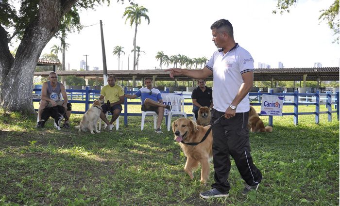 As aulas incluem correção dos maus hábitos e noções da psicologia canina. Foto: Divulgação
