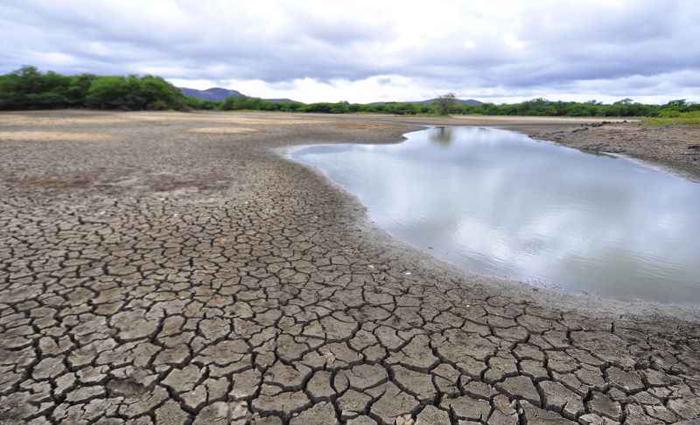 Em Sertânia, interior de Pernambuco, a imagem de uma das piores secas da história do país: temor de especialistas é que situação possa piorar. Foto: Annaclarice Almeida/DP