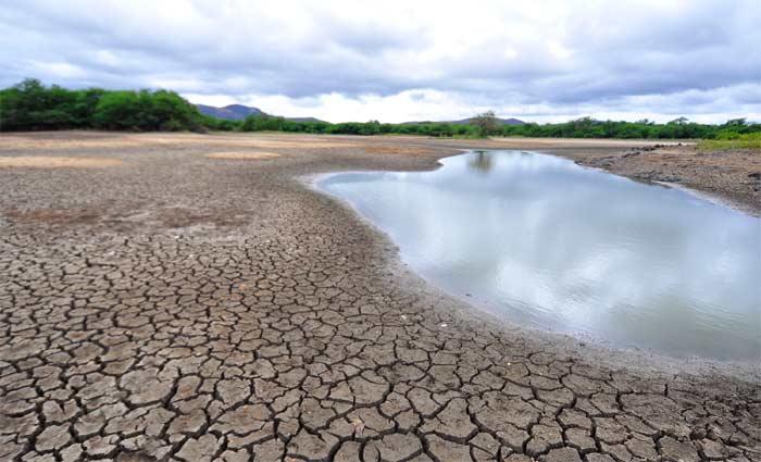 Após cinco anos seguidos de volume de chuvas abaixo da média histórica, a seca do semiárido já é considerada a maior do século. Foto: Annaclarice Almeida/DP