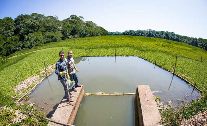 Um dos principais avanços da pesquisa mostrou que o biogás produzido a partir de resíduo animal ou vegetal possui a mesma qualidade, ou seja, concentração de metano, variando entre 50% e 70%. Foto: Nailana Thiely/Divulgação