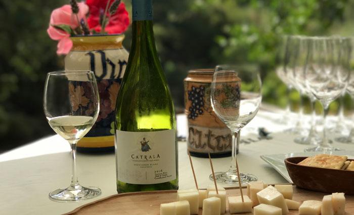 A vinícola boutique Catrala produz por ano 165 mil garrafas. Foto: Edilson Segundo/DP