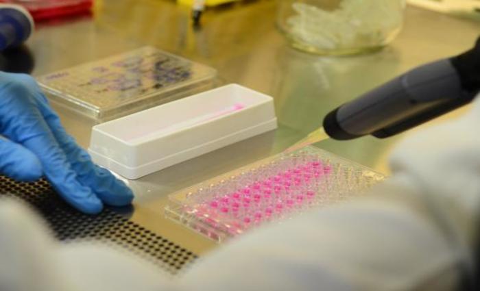 Os testes, com apoio de alunos de graduação e cinco outros pesquisadores, são feitos na Escola de Medicina da Universidade da Califórnia, em San Francisco, Estados Unidos. Foto: Rovena Rosa/Agência Brasil/Arquivo
