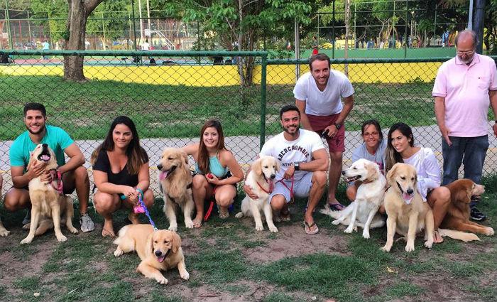 Encontro reúne tutores e cães da raça Golden Retriever e doação de ração. Foto: Divulgação