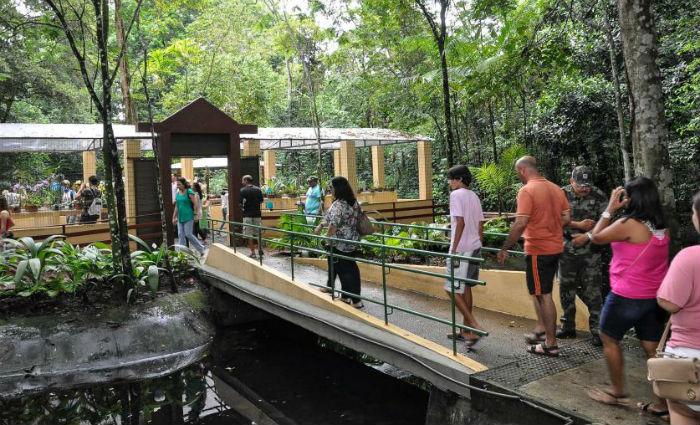 Jardim Botânico do Recife comemora Dia Internacional da Biodiversidade. Foto: Divulgação/ Jardim Botâcico