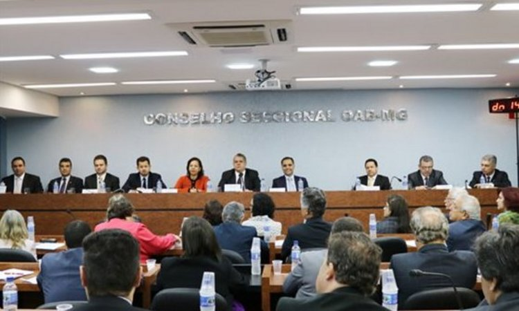 Conselheiros também aprovaram PEC que prevê a realização de eleições diretas até seis meses antes do término do mandato do presidente. Foto: Divulgação/OAB-MG