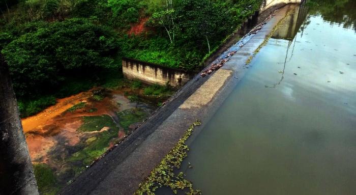 Chuvas trouxeram alívio diante da estiagem. Foto: Compesa/Divulgação (Chuvas trouxeram alívio diante da estiagem. Foto: Compesa/Divulgação)