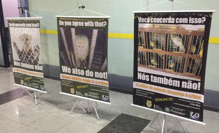 PRF e CPRH fazem campanha de combate ao tráfico de animais no aeroporto. Foto: PF/ Divulgação
