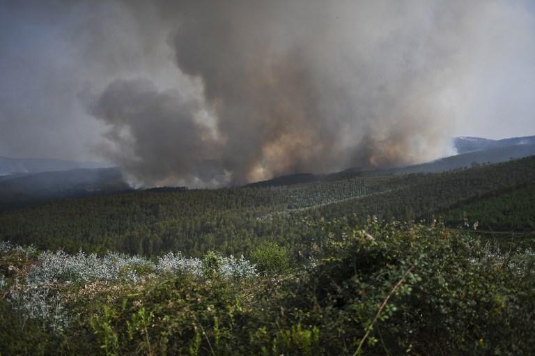 Mais de 1.000 bombeiros e de 700 veículos, além de 11 aviões foram mobilizados para apagar as chamas. Foto: PATRICIA DE MELO MOREIRA/AFP