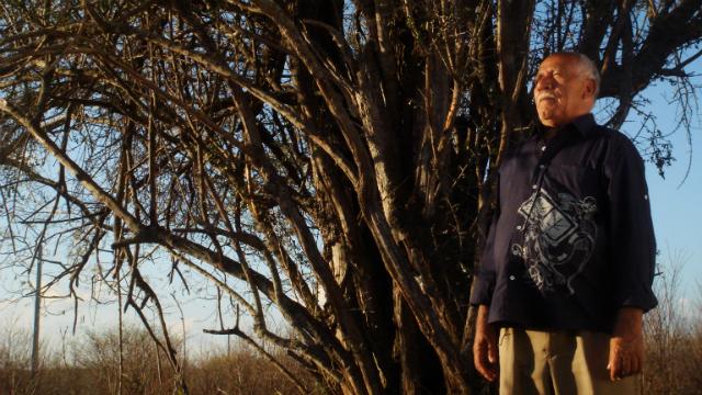 João Silva é o autor de sucessos como Pagode russo, Nem se despediu de mim e Danado de bom. Foto:Inquietude e Mariola Filmes/Divulgação