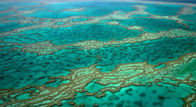 Barreira localizada no nordeste da Austrália é o maior recife de corais do mundo Foto: Danilo Manzani/CB
