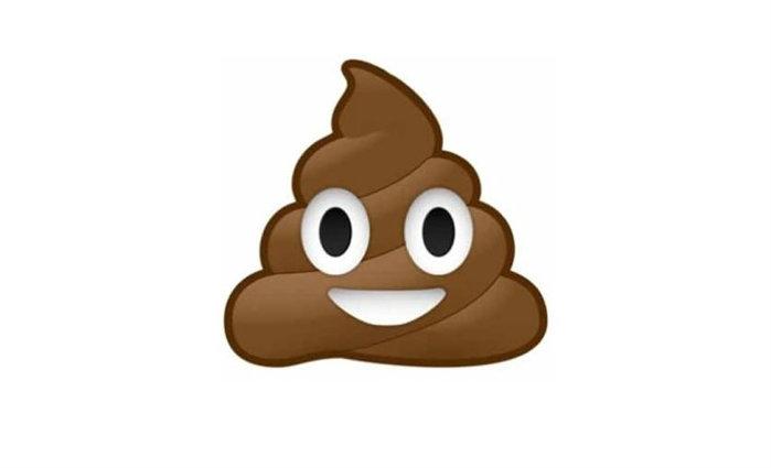 A segunda atitude desaconselhada pela proctologista (pasmem) é o uso de papel higiênico. Foto: Reprodução/Internet