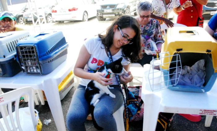 Adoção de animais no Shopping Recife. Foto:Inaldo Menezes/ Divulgação