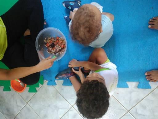 Segundo os pais, crianças comiam macarrão instantâneo com salsinha com frequência. Foto: Divulgação (Segundo os pais, crianças comiam macarrão instantâneo com salsinha com frequência. Foto: Divulgação)