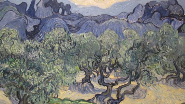 gafanhoto morto é encontrado em pintura de van gogh após 128 anos