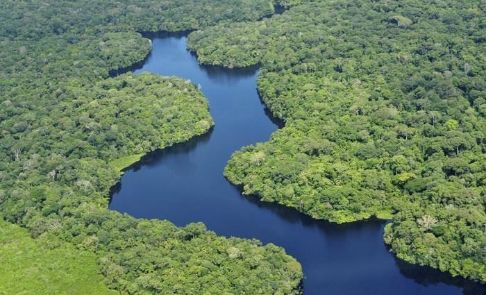 Área da Amazônia também apresentou diminuição no desmatamento. Foto: Reprodução/Wikicommons