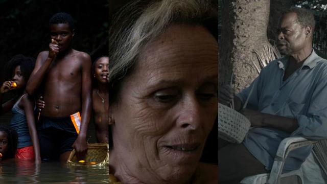 Filmes são exibidos em sessões gratuitas. Fotos: Fifer/Divulgação