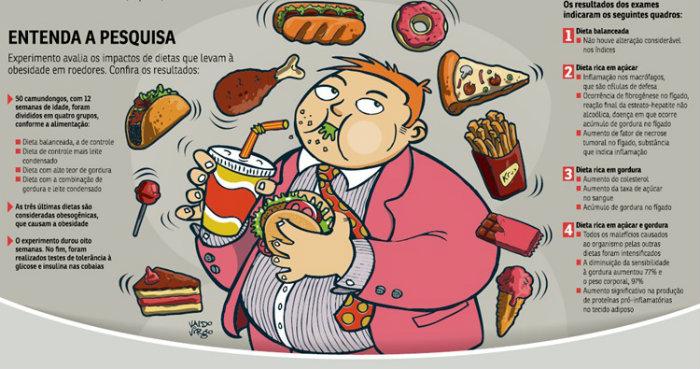 Dieta que combina excesso de açúcar e gordura aumenta o estado inflamatório do tecido adiposo. Foto: Reprodução