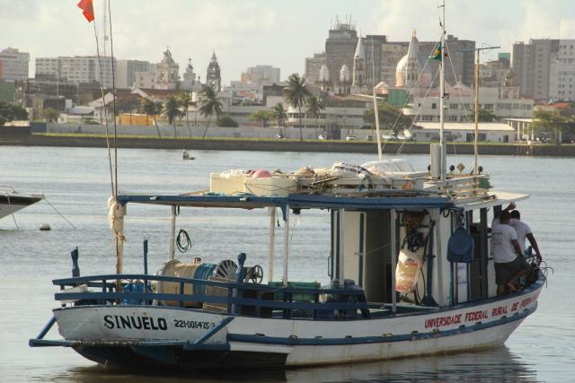 Barco Sinuelo era utilizado para capturar tubarões na costa pernambucana. Foto: Arthur Souza/Esp.DP/Arquivo.