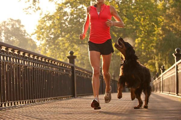 Caminhar e correr com o melhor amigo: além de prazeroso, faz bem à saúde. Foto: Reprodução