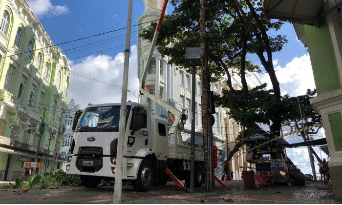 Emlurb reforça a manutenção da arborização no Recife. Foto: Samuel Calado/Esp DP