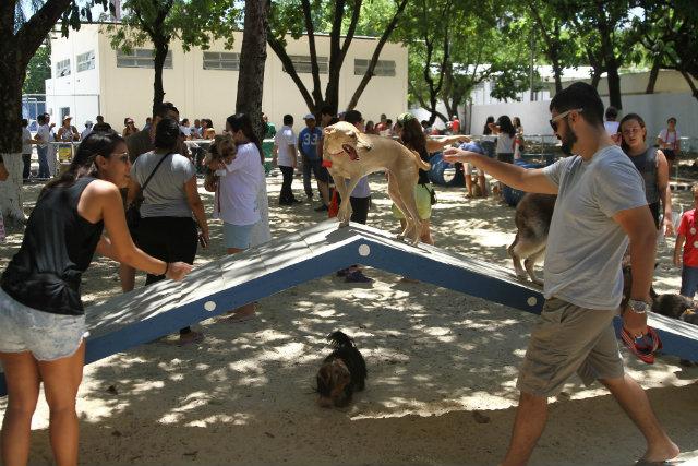 Inauguração do Parcão do Santos Dumont atraiu um grande número de pets. Foto: Julio Jacobina/DP
