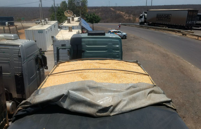 As cargas são avaliadas em aproximadamente R$ 150 mil. Foto: Divulgação