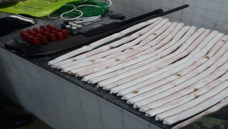 Foram apreendidos 20 bananas de dinamite, uma espingarda com munições. Foto: Reprodução/ Polícia Militar (Reprodução/ Polícia Militar)