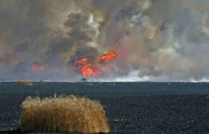 Um campo isralense perto da fronteira com Gaza pega fogo após lançamento de artefatos por palestinos. Foto:  AFP/Arquivos / Ahmad Gharabli