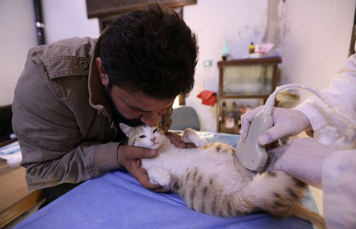Foto: Omar Haj Kadour / AFP