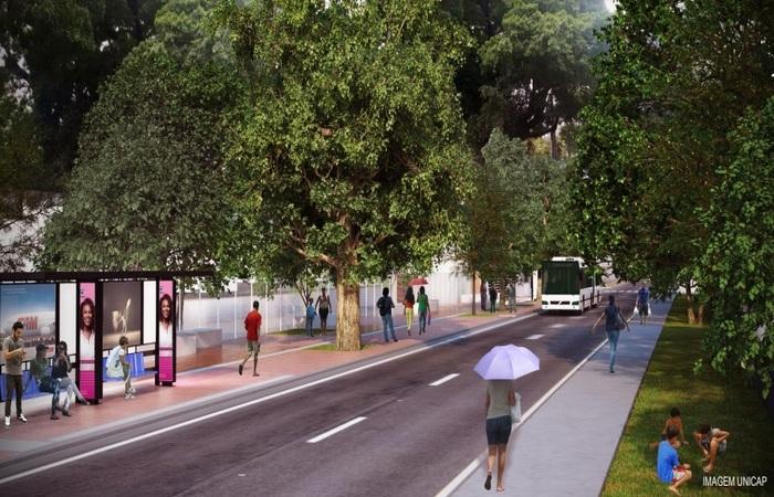 ém disso, toda a extensão da via terá a calçada alargada em 1,20 metros para permitir o uso livre do passeio público sem a retirada das árvores de grande porte existentes. Foto: Unicap/Cortesia