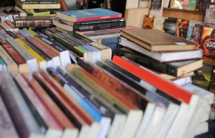 A expectativa do Ministério da Educação é a de que, antes do início do ano letivo de 2019, 151 milhões de livros cheguem às escolas públicas. Foto: Fernando Frazão/Agência Brasil