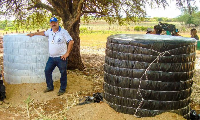 Tito Ferraz diz que foram plantados diversos tipo da espécie e todos tiveram boa colheita ao longo do ano. Foto: IPA/Divulgação
