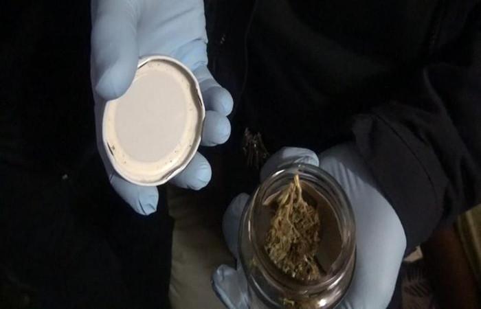 O flagrante aconteceu nesta terça. No CET, com o estudante de agronomia, agentes apreenderam um total de 7kg de entorpecentes. Foto: PCDF/Divulgação