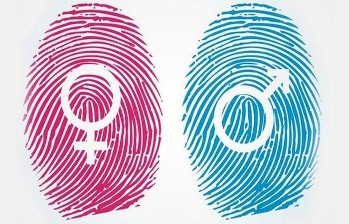 """Houve também consenso sobre a proibição da """"distinção entre sexos"""". Foto: Reprodução/Internet"""