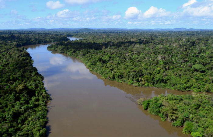 Pouso forçado foi realizado às margens do Rio Jamanxim Foto: Vinícius Mendonça / Ibama