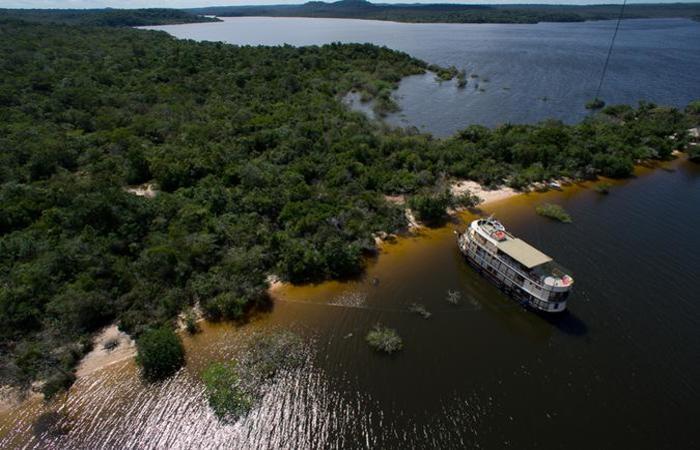 As estimativas para 2025 não são positivas: até lá, haverá uma perda anual de 27 mil quilômetros quadrados de matas na Amazônia (foto: Pierre Lesage/CB/D.A Press)