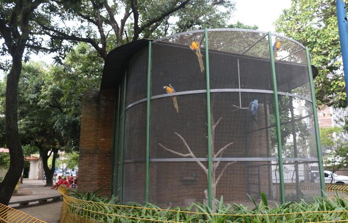 Em novembro do ano passado, o Ministério Público de Pernambuco (MPPE) recomendou ao Executivo Municipal que os animais fossem retirados do Parque 13 de Maio. Foto: Gabriel Melo / Esp. DP- LOCAL