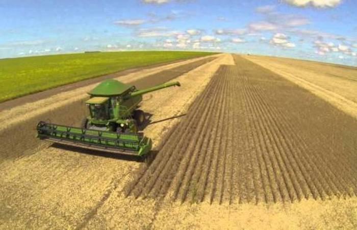 Pelos cálculos da Abiove, o prejuízo acumulado até o momento com o transporte de grãos é de cerca de US$ 3 bilhões. Foto: Reprodução/Internet
