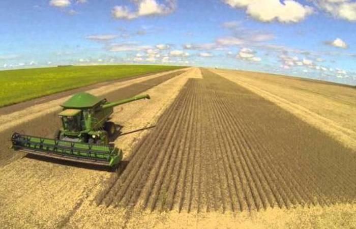 No terreno agrícola, a soja parece ser o único setor envolvido nas negociações. Foto: Reprodução/Pixabay