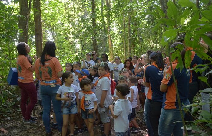Nova trilha vai apresentar as plantas do bioma amazônico. Foto: Lú Streithorst/PCR