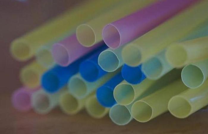 Projetos de lei em tramitação na Câmara dos Deputados preveem a proibição de uso, fabricação e comercialização dos tubinhos de plástico em todo o território nacional. Foto: Reprodução/Internet