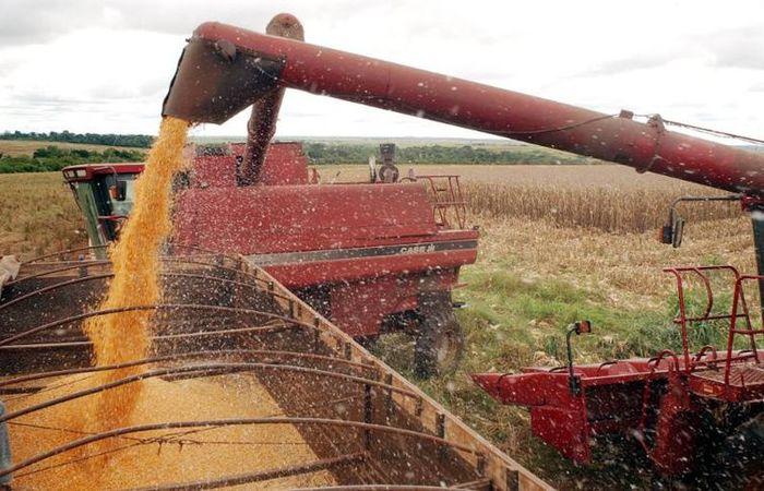 A previsão do estudo é que as lavouras de soja e milho vão comandar a expansão da produção agrícola do país. Foto: Agência Brasil (Foto: Agência Brasil)