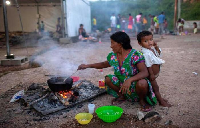 Roraima diz que não recebeu ressarcimento pelos gastos com imigrantes (foto: AFP / Mauro PIMENTEL )