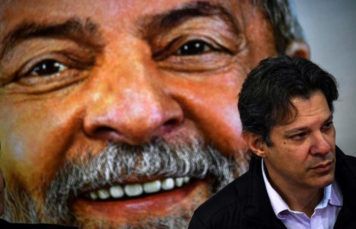 Haddad assumirá o posto de candidato a presidência caso Lula não seja liberado para as eleições. Foto: Arquivo / AFP
