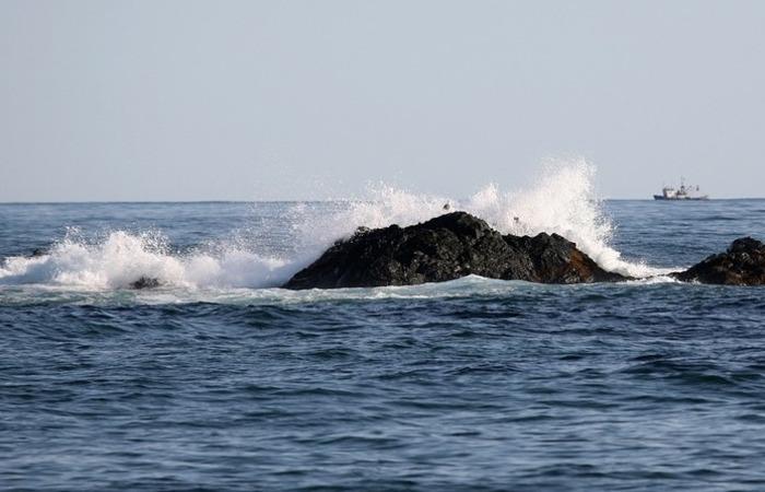 O PTWC pediu a todos que vivem perto da costa que permaneçam alertas e sigam as instruções das autoridades locais. Foto: Reprodução/Pixabay