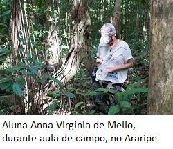 UFPE/Divulgação