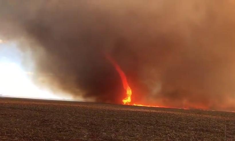 Vídeo mostra tornado sobre uma linha de fogo na Fazenda Caxuana. Foto: Reprodução/Youtube