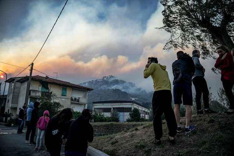 Foto: FEDERICO SCOPPA / AFP