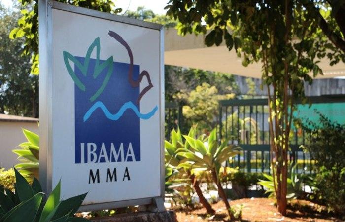 Foto: Divulgação / IBAMA
