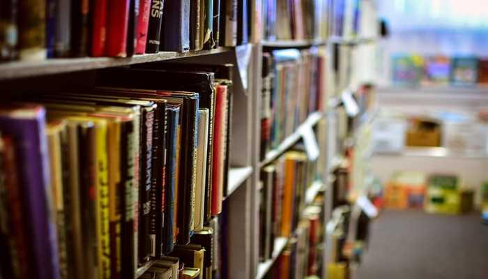 Ação vai contar com mais de 100 empresas do seguimento literário, espalhadas em cerca de 50 estantes. Foto: Reprodução/Pixabay